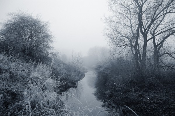 Foggy By The River