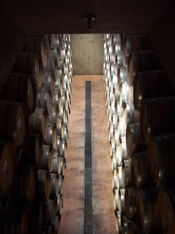 Vineyard, nappa valley, barrel vault