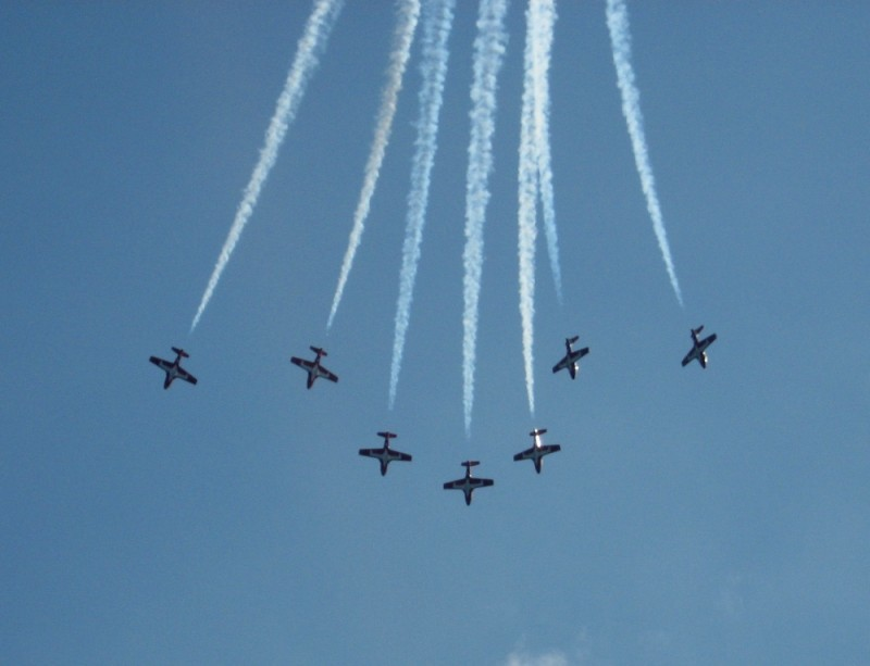 SnowBirds at the CNE