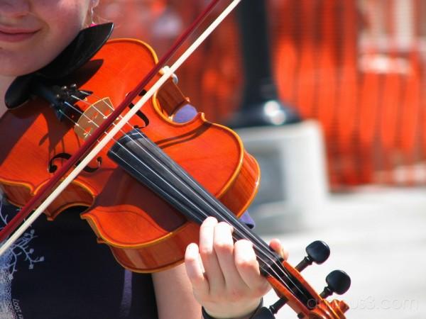 Street fiddler at Kingston market.