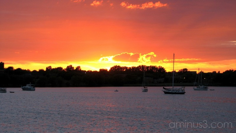 Boats anchored in harbour sunset.