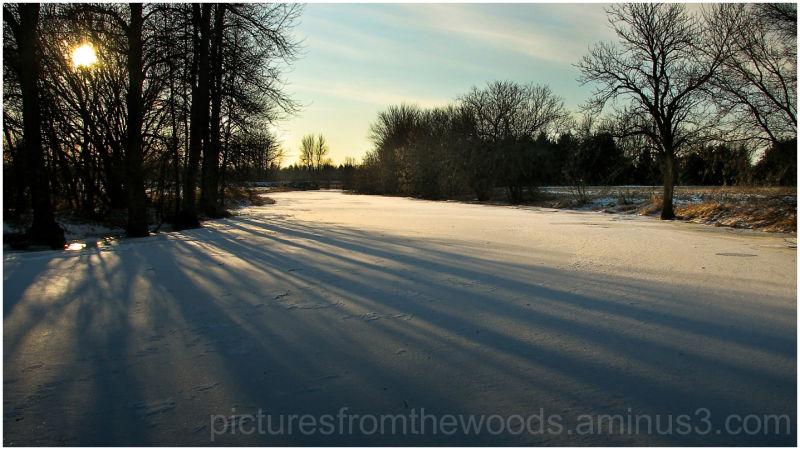 Winter sun throws shadows on a frozen creek.