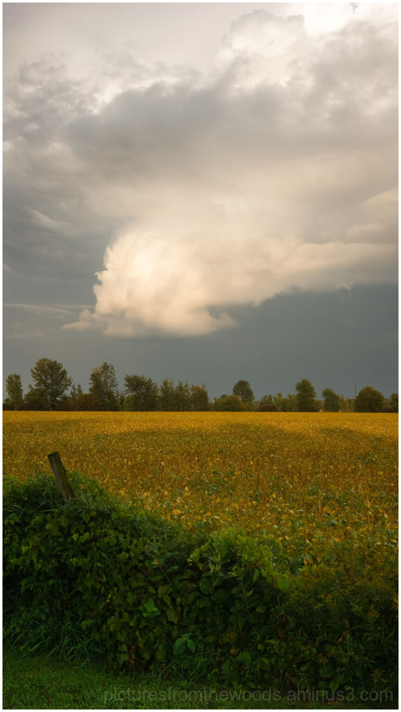 Another view of a late summer storm passing by.