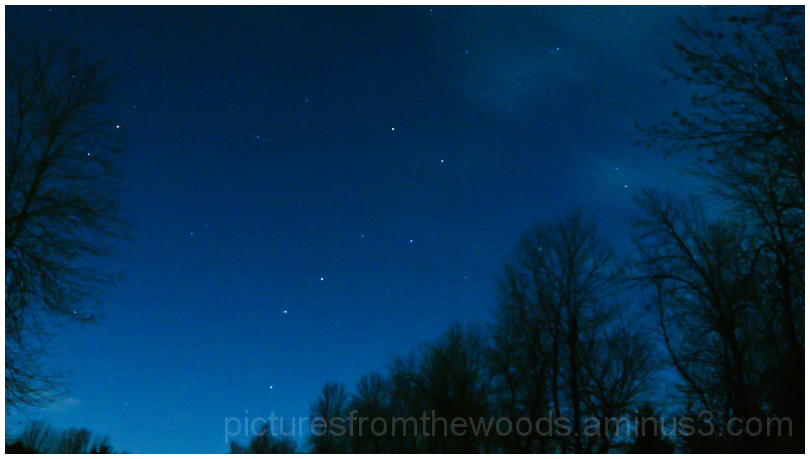 Ursa major constellation on winter's night