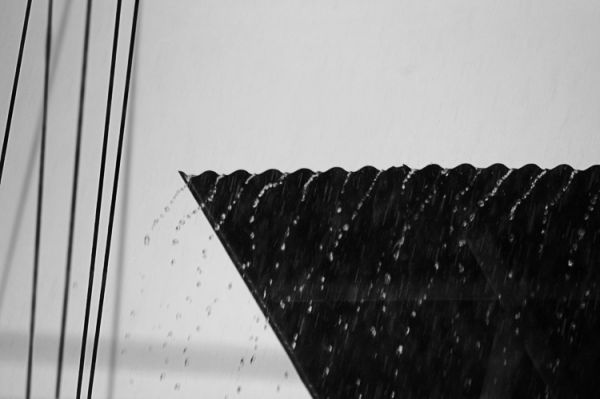 Lines In The Rain