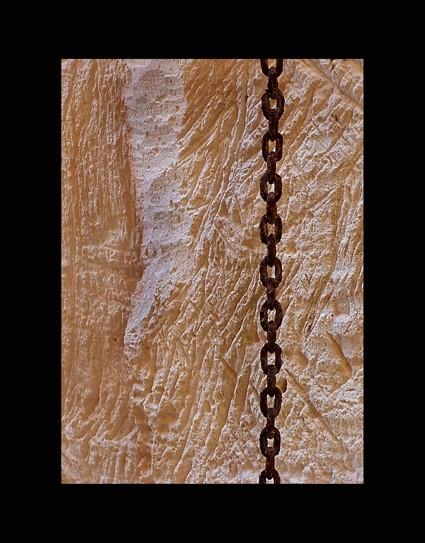 Rovell de cadena, textures de marès