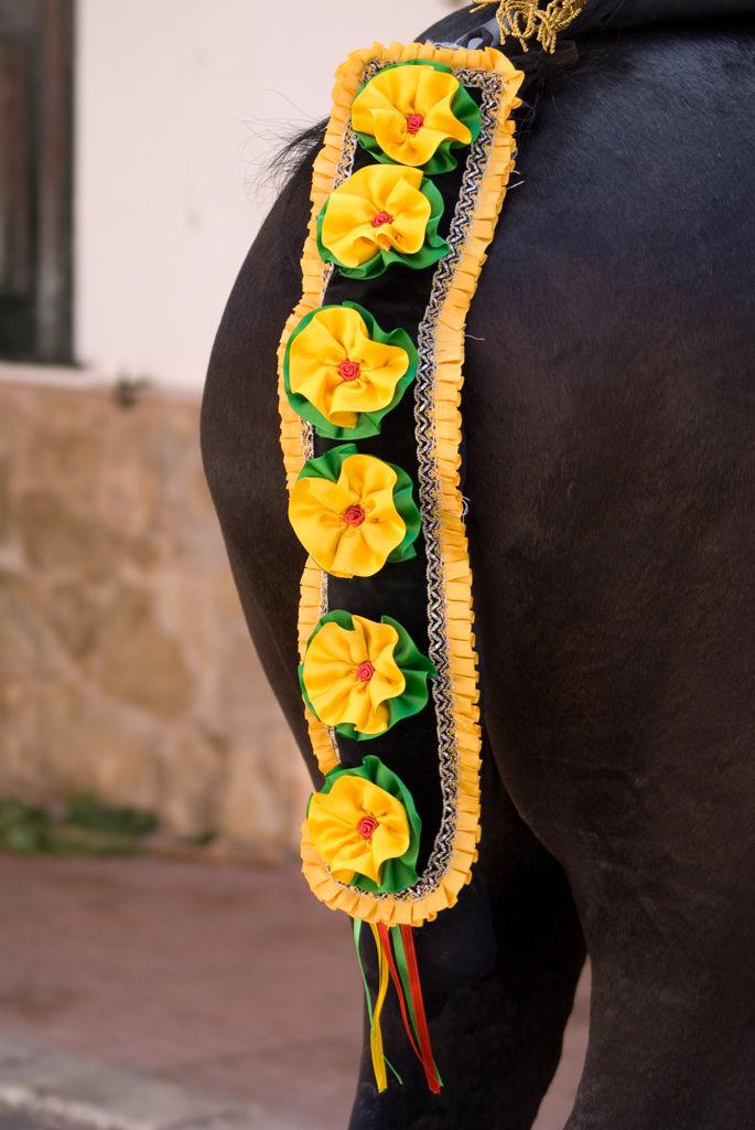 Ornament de la cua d'un cavall