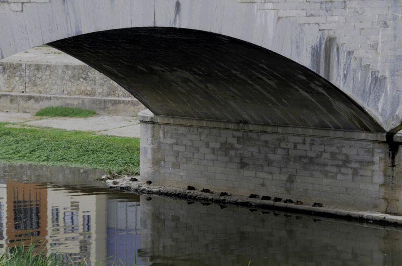 Un passeig per Girona_III