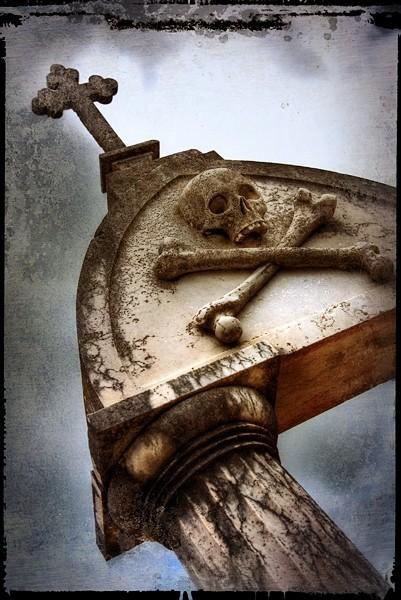 Skull 'n' Cross Bones