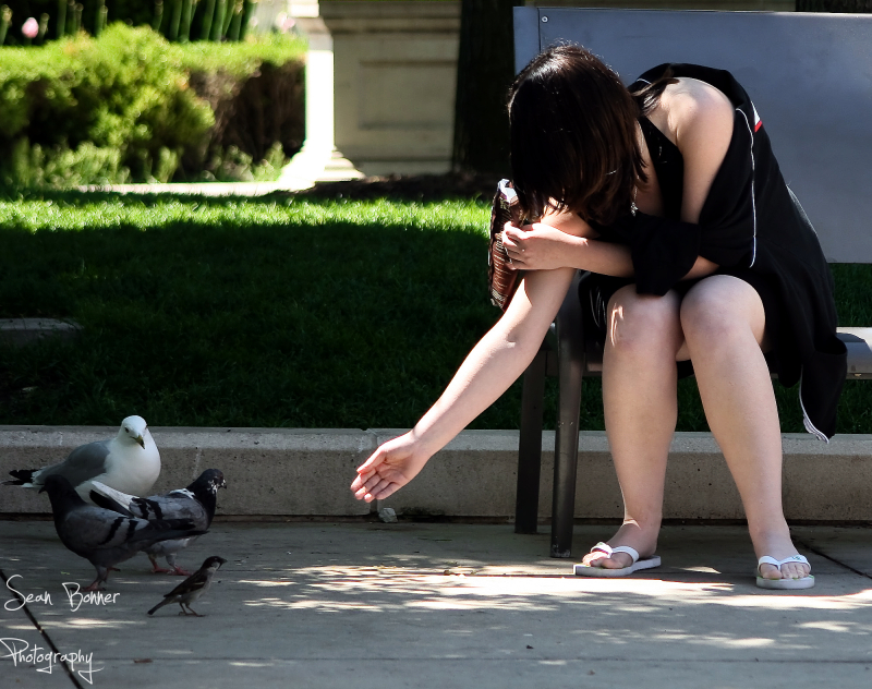 Girl feeding pidgeon