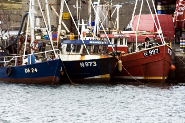Fishing boats in DunLaoghaire