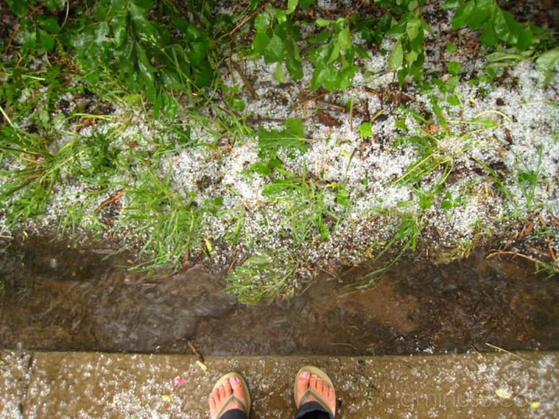 flipflops in the hail