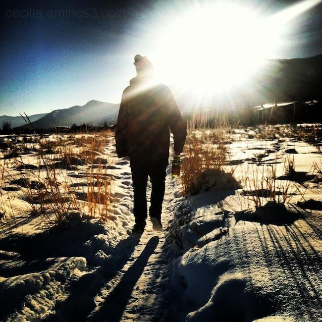 winter path walks