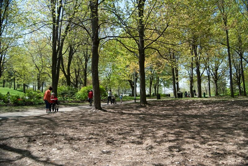 Parc Mont-Royal