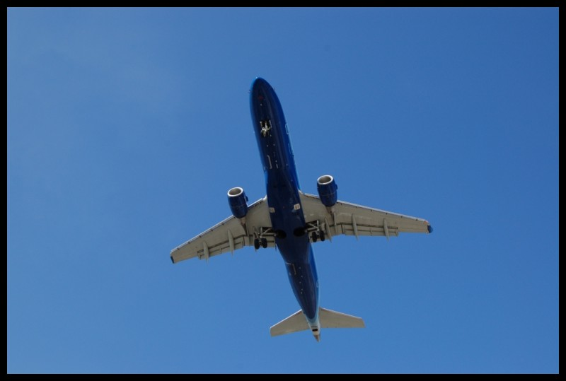 Plane landing at Pearson Airport