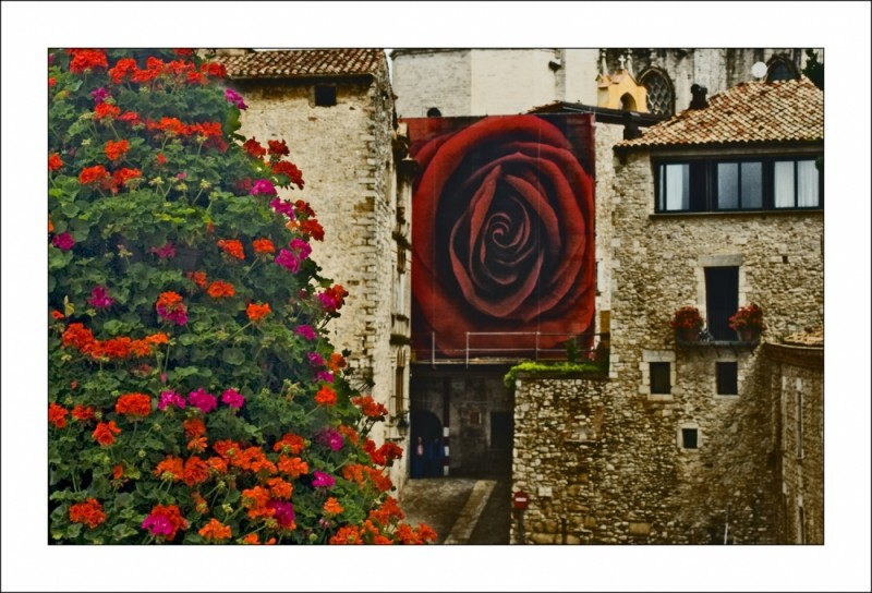 Girona.Temps de flors 2008