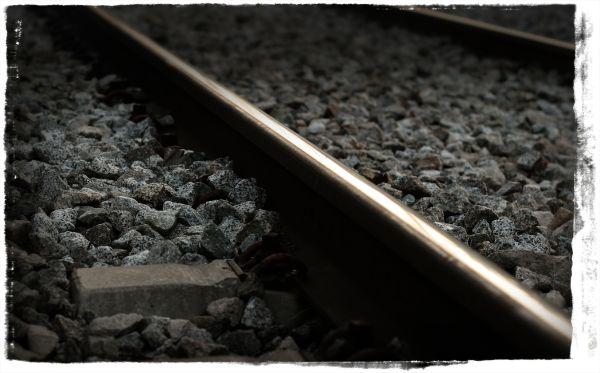 desdibuix Bohigas train railway tren