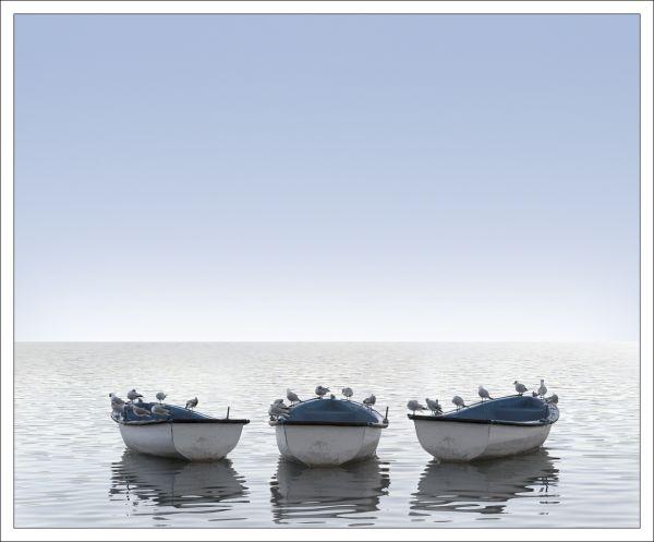 Banyoles's boats
