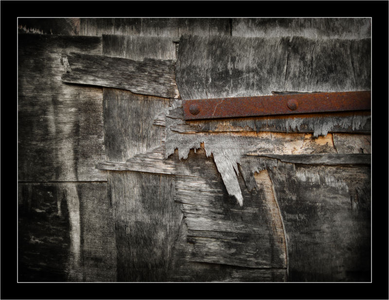 Wood fusta