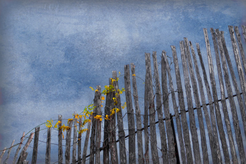 fence rusted