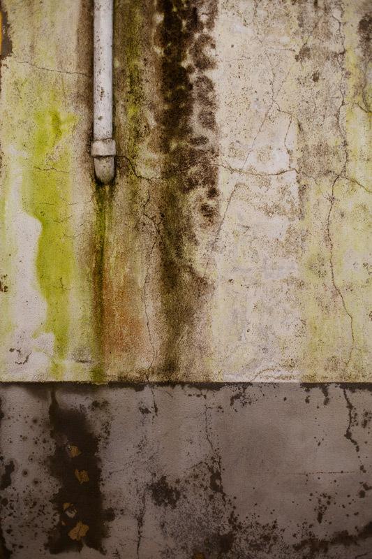 wall paret mur