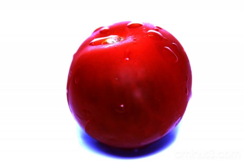 Cherry or Tomato