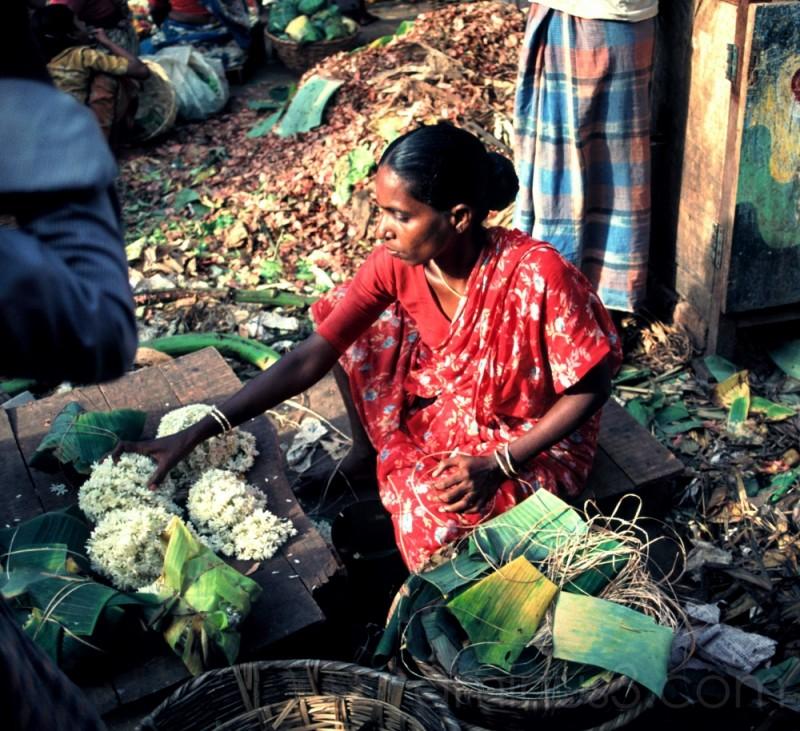 Vellore, Tamil Nadu, Inde, septembre 1988
