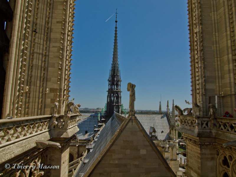Notre Dame (de Paris)