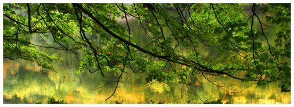 Autumn #3