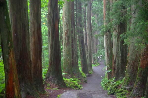 togakushi shrine, Nagano Japan