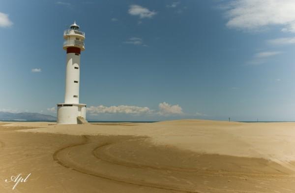 Punta del Fangar