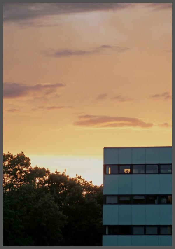 sunset over suburbia
