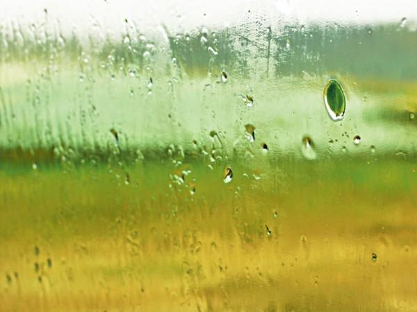 Paint Of Rain