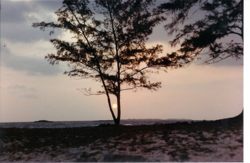 caribbean sunset2