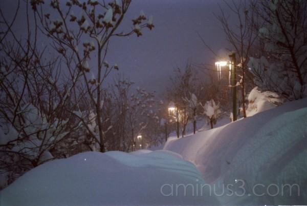 SNOW&NIGTH