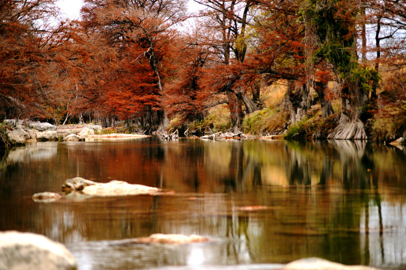 Guadalupe River Autumn Colours