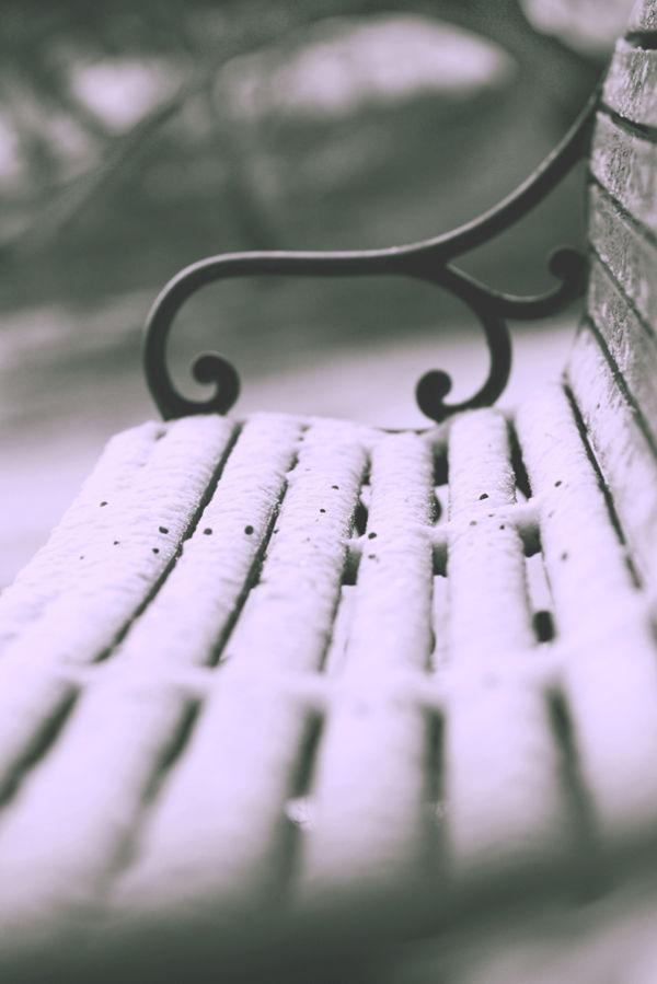 Boerne Snow