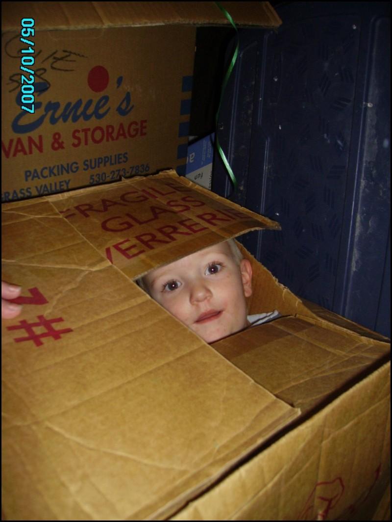 Boy in Cardboard box