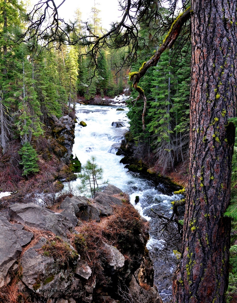 Falls in Bend Oregon