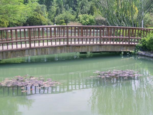 bridge, pond, flower garden, esfahan