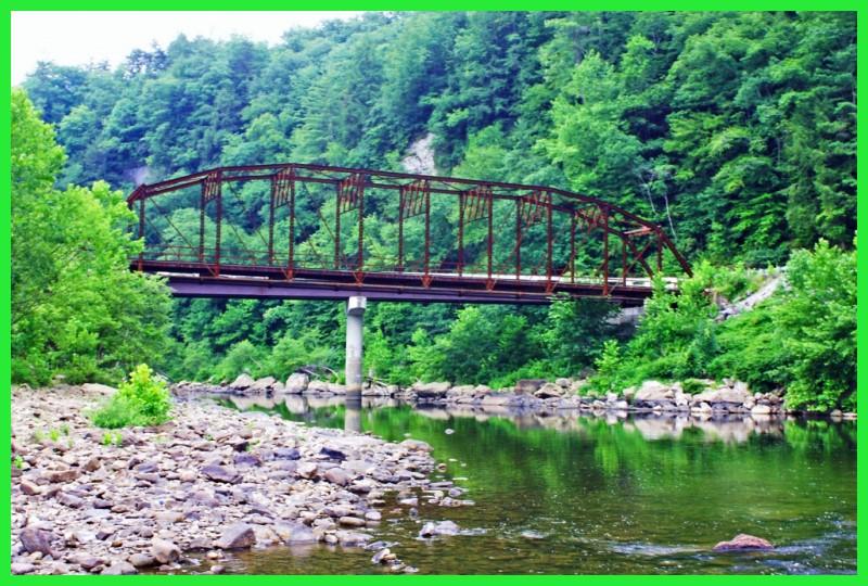 Nemo bridge