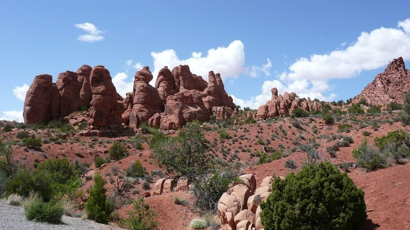 Roadside View In Arches National Park, Utah