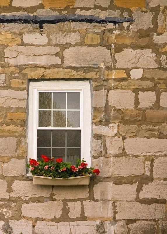 geranium window box stone house
