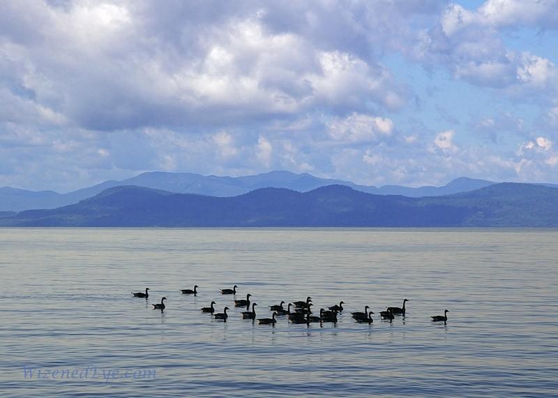 View across Lake Champlain to Adirondack Mountains