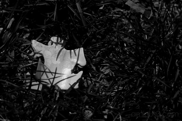 Lost Puzzle Piece