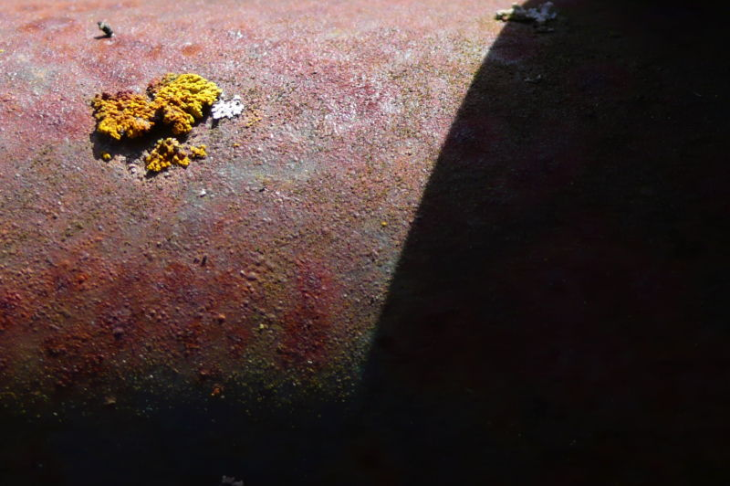 macro picture of farm pipe with shadow and lichen