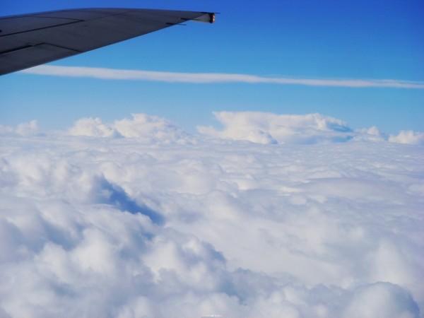 cloud sea, fairy
