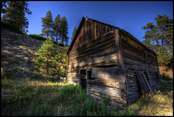 Old Log House