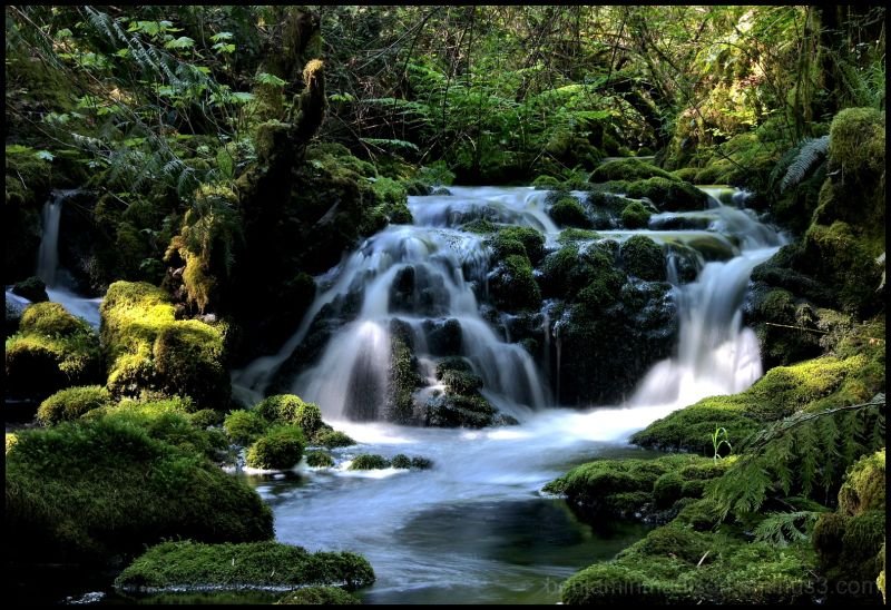 Mackenzie Creek