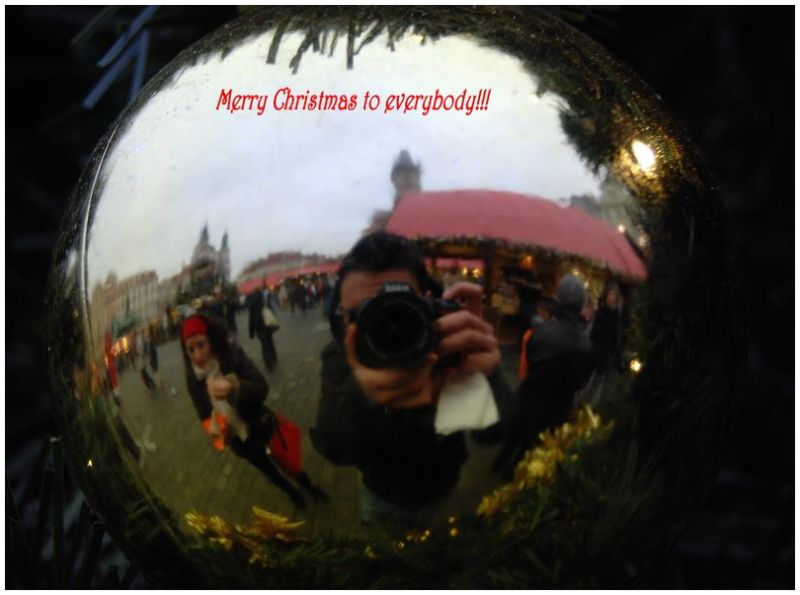 Merry Christmas 2008!!!